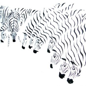 Mary-Anne Bartlett, A Dazzle of Zebra