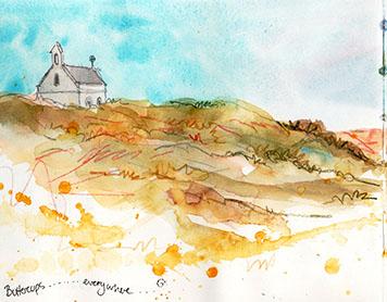 Pembrokeshire Paintbox