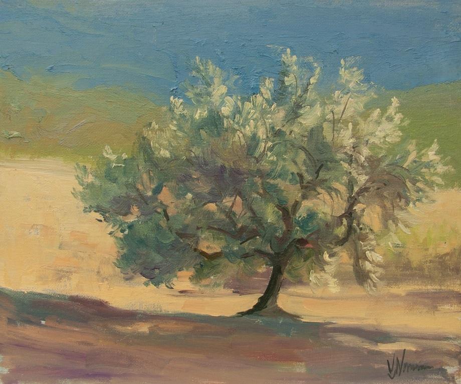 Art Safari Morocco, Olive tree study, Vicki Norman