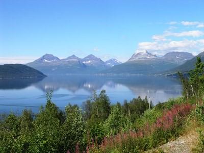 Art Safari Norway Kvaloya views