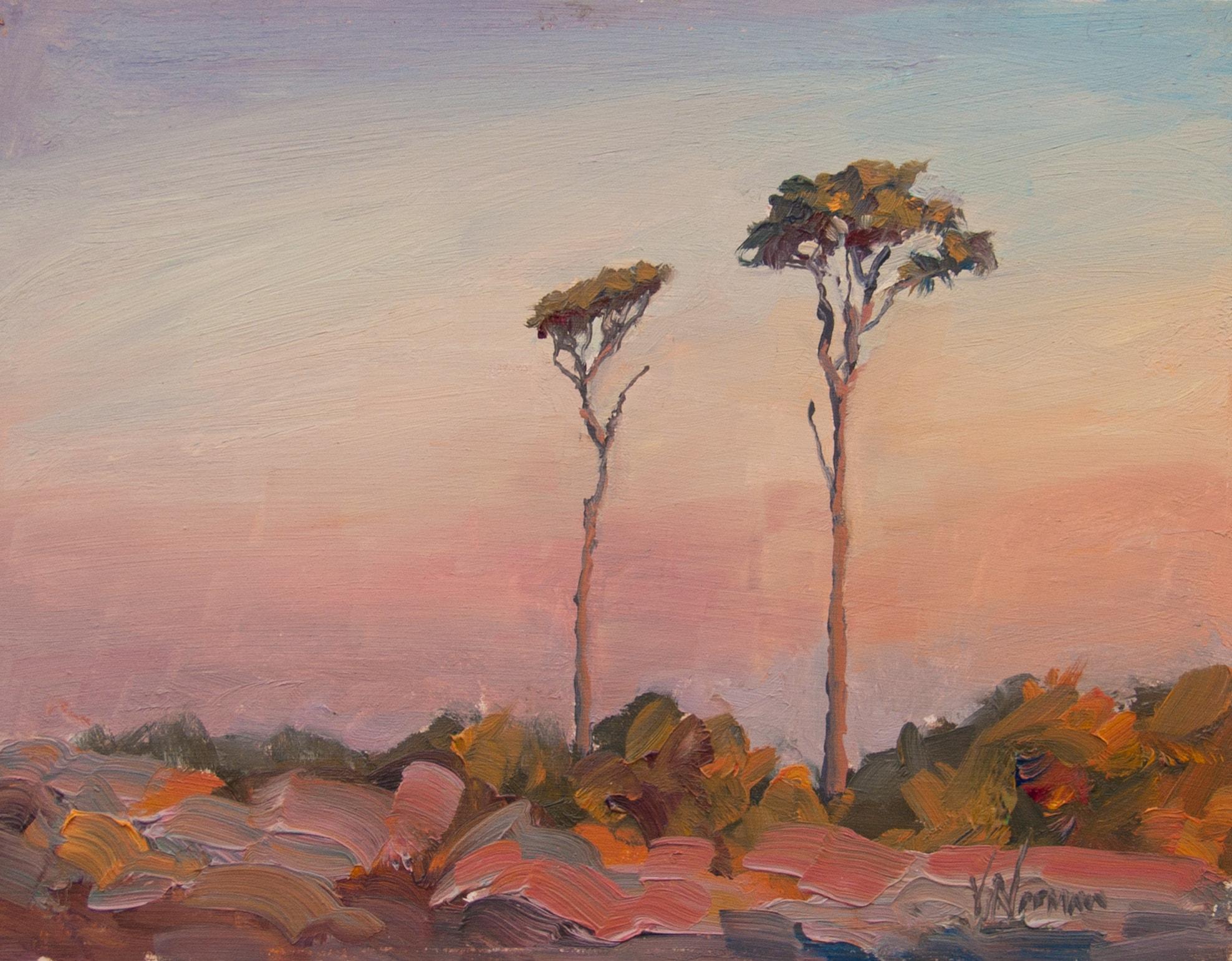 Vicki Norman painting