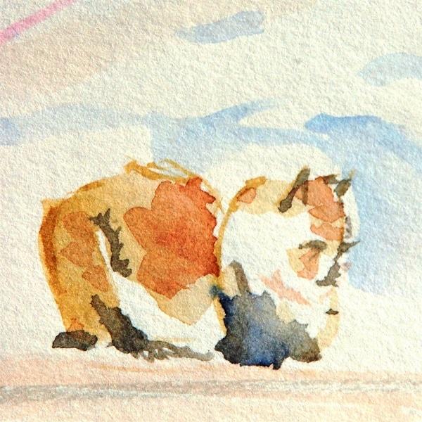 Art Safari Morocco, Sleeping Cat, Mary-Anne Bartlett