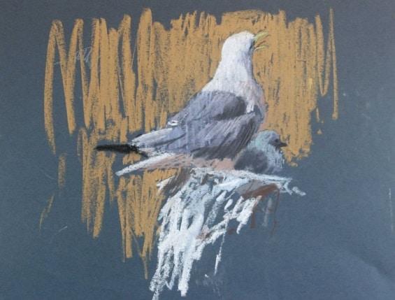 Art Safari Orkney, Seagulls by John Threlfall
