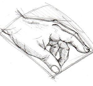 Claudia Myatt hand sketch
