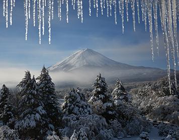 Mount Fuji, Art Safari Japan