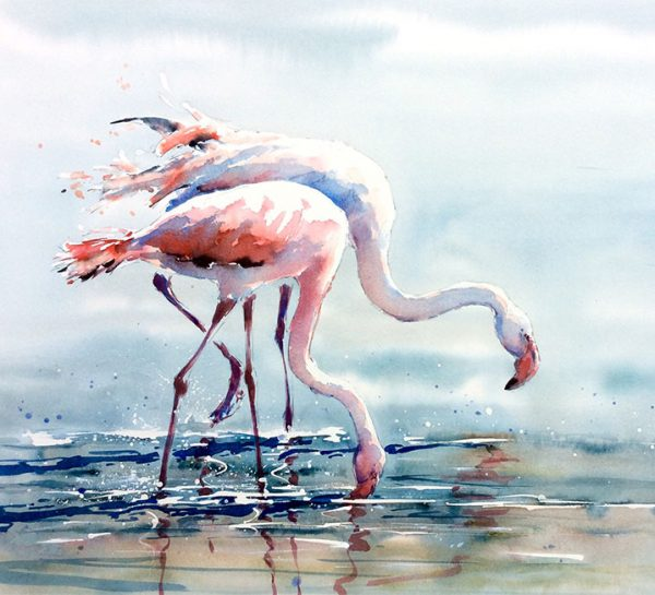 Flamingos by Julia Cassels