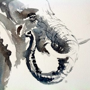 Elephant by Mary-Anne Bartlett