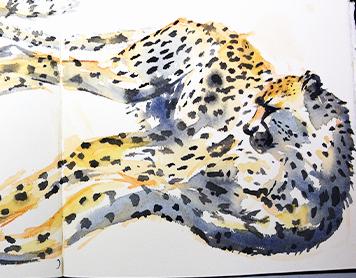 Art 4 Cheetahs Workshop