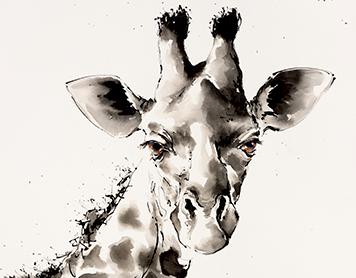 Virtual wildlife in watercolour – giraffes