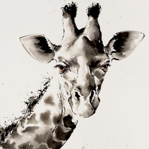 Giraffe Time, Indian Ink and Watercolour - Julia Cassels