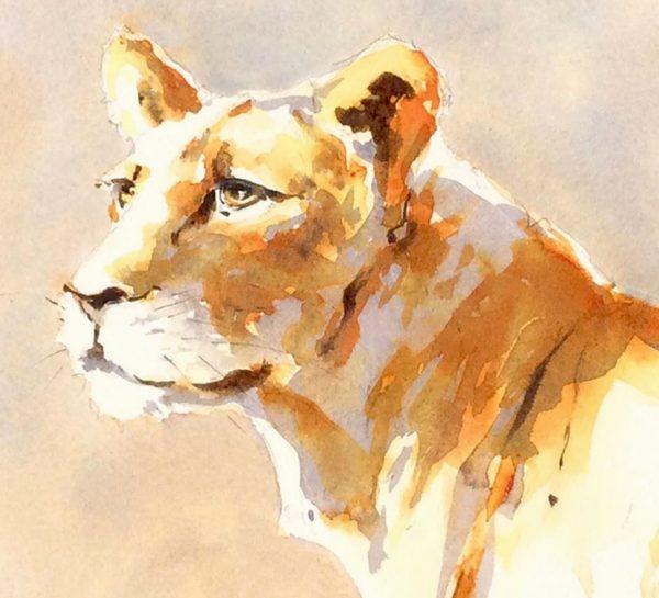 Lioness, Julia Cassels
