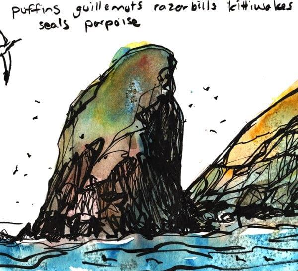 Skomer Island sketch, Claudia Myatt
