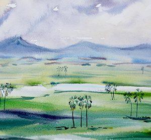 Liwonde floodplain, Mary-Anne Bartlett